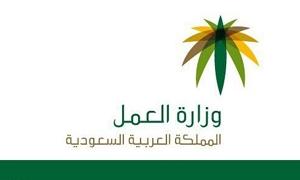 تحريك دعوى قضائية لوقف قرار وزارة العمل السعودية فرض 2400 ريال سنويا على العمالة الأجنبية