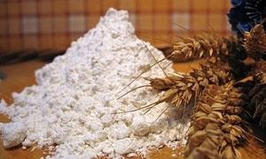 مدير المطاحن: استيراد 1.3 مليون طن من القمح بسعر 287 يورو للطن الواحد