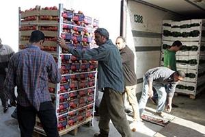 رغم قرار المنع ..التبادل التجاري بين سورية ولبنان مازال قائماً