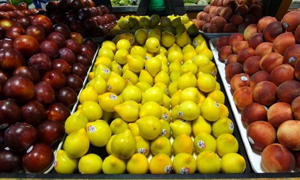 الرقم القياسي لأسعار الاستهلاك في لبنان ينخفض في تموز
