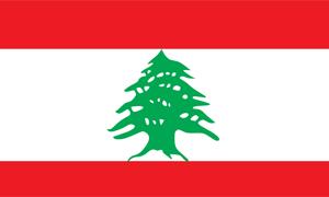 54 مليار دولار إجمالي الدين العام اللبناني