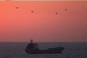وزير لبناني أحد مالكي شركة تبيع إسرائيل سفناً حربية