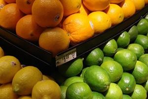مجلس الوزراء: نصف مليار ليرة لدعم تسويق الحمضيات والتفاح