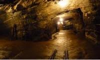 فنزويلا تنوي تأميم مناجم الذهب