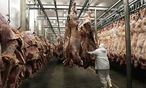 لبنان وستة دول تفرض حظراً على استيراد لحوم البقر من البرازيل
