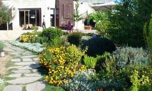 وزارة البيئة تقيم حديقة بيئية في دير الزور