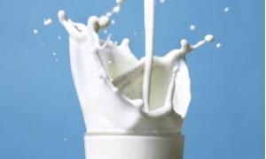 أسباب غامضة توقف العمل بإنشاء مصنع لحليب الأطفال