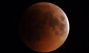 زراعة القمر تبدأ في عام 2015