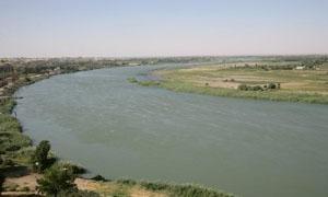 ملوثات معملي الورق والسكر تتدفق إلى نهر الفرات دون معالجة