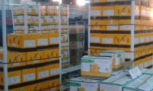 سورية تصدر أكثر من 2200 طن من المواد الغذائية خلال 6 أشهر