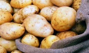 احذروا طهي البطاطا بقشرها..فقد تصابون بالتسمم!!