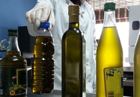 أسعار الزيتون في سورية تواصل ارتفاعها الخيالي.. والصفيحة الواحدة إلى 22 ألف ليرة