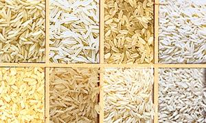 العراق يشتري 100 ألف طن من الأرز