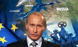 بوتين يضمن لأوروبا توريد الغاز الروسي من دون انفطاع عبر