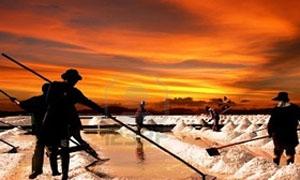 الترخيص لشركة (سبكر) الهنغارية لاستثمار الملح في المنطقة الشرقية