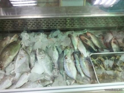 ضبط 50 طناً من الأسماك.و 850 اسطوانة غاز مخالفة في صالات الخزن والتسويق بدمشق