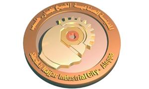الشهابي: أكثر من 10 لجان محلية منتخبة من