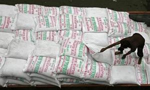 العراق يطرح مناقصة لشراء 50 ألف طن من السكر الأبيض