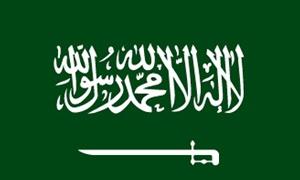 السعودية في المركز 14 عالميًا في تجارة التجزئة لعام 2012