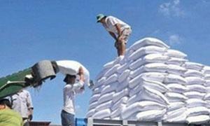 سورية تستورد 4500 طن دقيق أوكراني