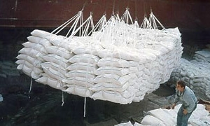 التجارة الخارجية تعلن عن مناقصة لتوريد 21 مادة غذائية بكمية تتجاوز 1.250 مليون طن بموجب الخط الإئتماني الإيراني