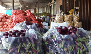 مسؤول يحذر من نفص الخضار و الفواكه و الغذائيات في سورية خلال شهر