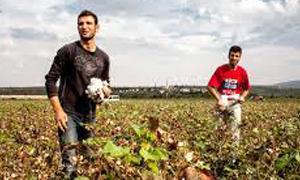 سورية تبحث تطوير وتعزيز التعاون الزراعي مع جمهورية كوريا الديمقراطية