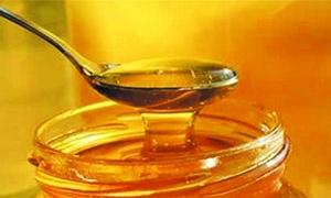 إنخفاض انتاج سورية من العسل إلى 500 طن سنوياً..وضبط أعسال مغشوشة وغير مطابقة للمواصفات السورية