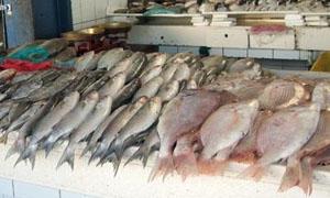 ارتفاع أسعار اللحوم والسمك 40 بالمئة في أسواق دمشق.. وكيلو سمك الهامور بـ1200 ليرة