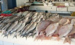 حصة المواطن السوري من السمك تنخفض لأقل من كيلو غرام واحد