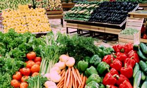 نشرة أسعار الخضار والفواكه والفروج في أسواق دمشق.. كيلو الخيار بـ140وصحن البيض بـ550 ليرة