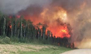 اندلاع 14 حريقاً في يوم واحد بطرطوس ووفاة عامل إطفاء وإصابة 3 آخرين