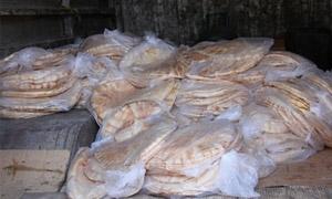 مصادرة 1400 ربطة خبز معدة للتهريب