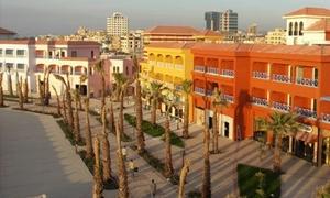 الفاينانشيال تايمز: سورية عاشراً عربياً من حيث الاستثمارات البينية الأجنبية بقيمة 16مليار دولار حتى ابريل  2014