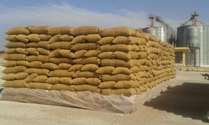 مسؤول: نحو 2 مليون طن الطاقة الاستيعابية للصوامع في سورية