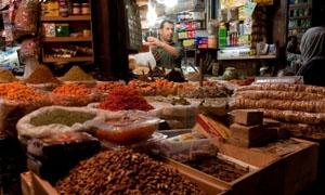 الزراعة: 1000 نوع من النباتات الطبية والعطرية في سورية مؤهلة للتصدير