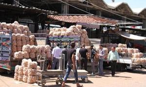 3.5 ملايين طن إجمالي كمية الخضار والفواكه الداخلة لسوق الهال بدمشق سنوياً