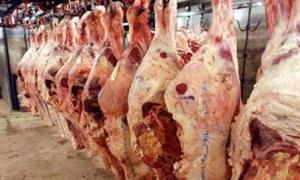 اتحاد غرف الزراعة: أكثر من 11 ألف بقرة حلوب المؤمن عليها..وقريباً على الذبائح