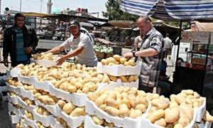 مديرية التجارة الداخلية بدمشق تحدد أسعار الفروج والبيض والخضار والفواكه.. البندورة بـ 45 ليرة للكيلو والبطاطا بـ 60 ليرة