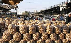 وزارة الاقتصاد تمدد قرار وقف تصدير الخضار حتى نهاية العام 2013