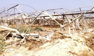 2.534 مليون ليرة تعويضات لـ 201 مزارع متضرر بالكوارث الطبيعية