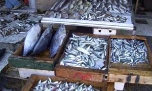 الثروة السمكية في سورية تسعى إلى تحصيل الرقم العالمي باستهلاك الفرد والبالغ 12 كغ