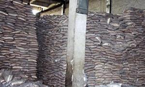 ضبط مستودع للدقيق التمويني وإغلاق معمل للألبان بريف دمشق