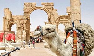 1.66 مليار دولار خسائر القطاع السياحي في سورية