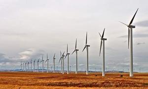 وزارة الكهرباء: توقيع مذكرة تفاهم لإنشاء مزارع ريحية لتوليد 105 ميغاوط