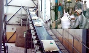مؤسسة السكر تنتج 9800 طن من السكر الأبيض و4500 طن من الميلاس