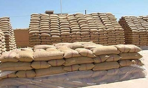 المصرف الزراعي يخصص 80 مليار لشراء محصول الحبوب