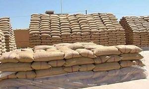 425 طناً من القمح إنتاج مطحنة جبلة يومياً..20% منها نخالة علفية