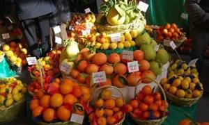 اتحاد غرف الزراعة: تسويق 60 بالمئة من الحمضيات وتوقع بارتفاع إنتاج البطاطا إلى 600 ألف طن