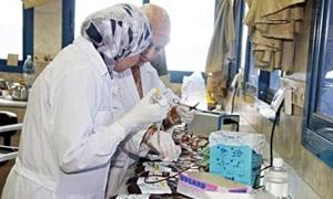 تاميكو تدرس إنشاء معمل جديد للأدوية والسيرموات..وطرح اصناف من الأدوية النوعية في الأسواق أهمها السكري والضغط
